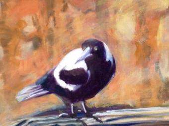 Magpie ducking