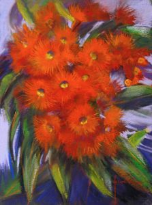 Flowering Gum - Orange