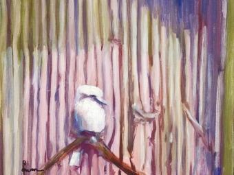 Kookaburra Sits ….