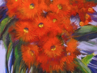 Flowering Gum – Orange